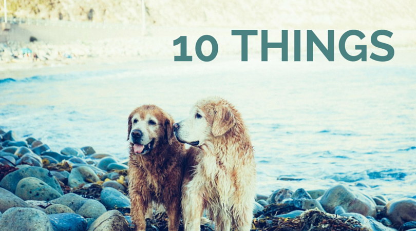 10 Things I Couldn't Live Without